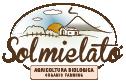 https://www.bcadv.it/wp-content/uploads/2015/04/solmielato-03.png
